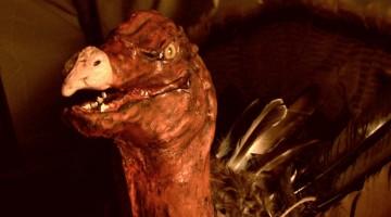 Scary Turkey